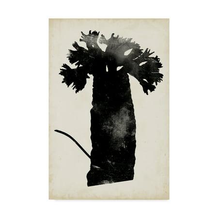Trademark Fine Art 'Fern Silhouette II' Canvas Art by Vision Studio