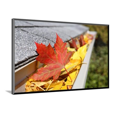 Rain Gutter Full of Leaves Wood Mounted Print Wall Art By soupstock