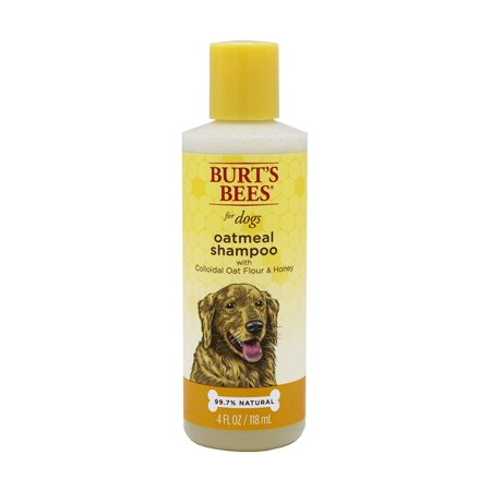 Burts Bees Oatmeal Dog with Colloidal Oat Flour and Honey, 4oz Burts Bees Oatmeal Shampoo is made with some of natures finest ingredients for your peace of mind and a happy dog. Burts Bees uses all-natural ingredients because we want to give you an effective but safe way to bathe your dogs sensitive skin without any harmful chemicals or irritants. Tap into natures power today with Burts Bees Oatmeal Dog Shampoo.