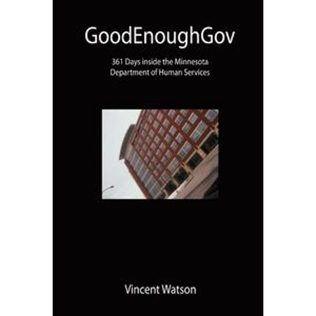 GoodEnoughGov: 361 Days inside the Minnesota Department of Human Services - eBook