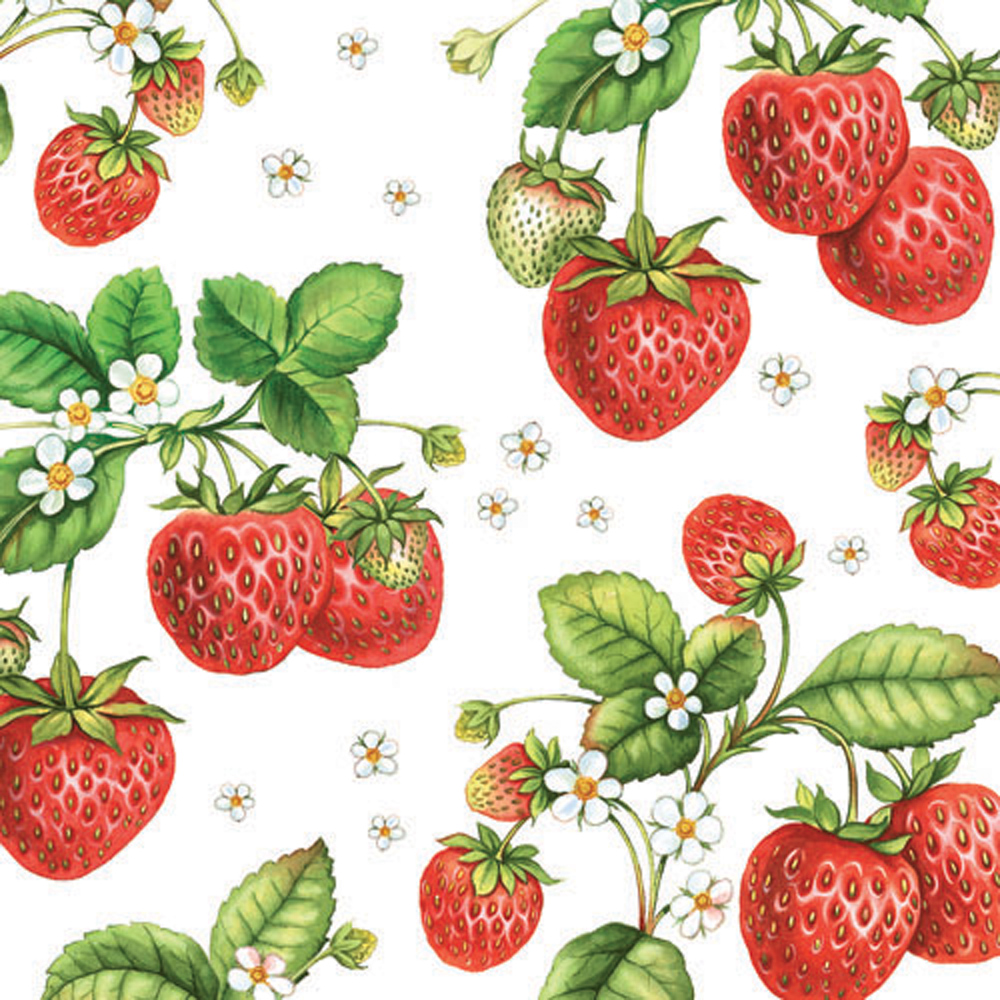Ambiente Strawberry Plant Cocktail Napkins, 20 Ct by Supplier Generic