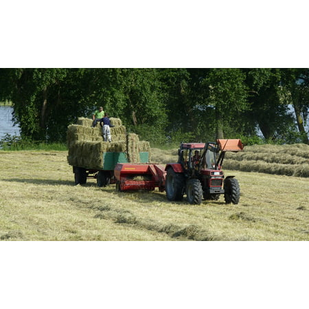 Canvas Print Cattle Feed Hay Tractor Tractors Agriculture Red Stretched Canvas 10 x 14 ()