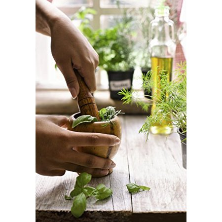 Image of Culinary Herb Garden – 8 Easy-to-Grow Varieties, 100% Heirloom, Open-Pollinated Non-GMO Kitchen Herb Seeds in a Sturdy Storage Can