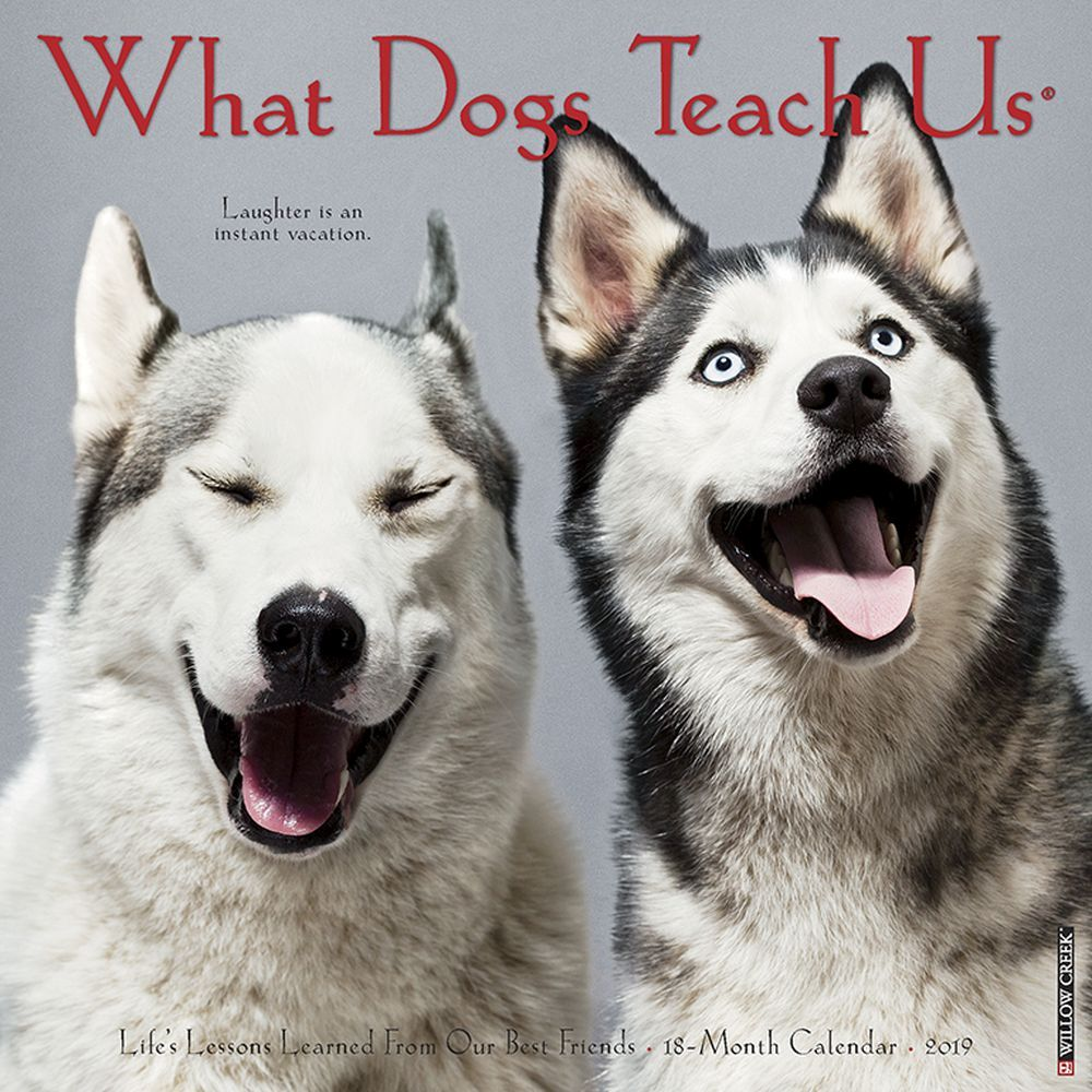 What Dogs Teach Us Mini Wall Calendar, More Dogs by Calendars