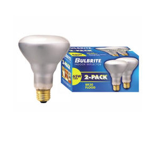 Bulbrite Industries 65W 120-Volt (2700K) Incandescent Light Bulb (Pack of 2) (Set of 8)