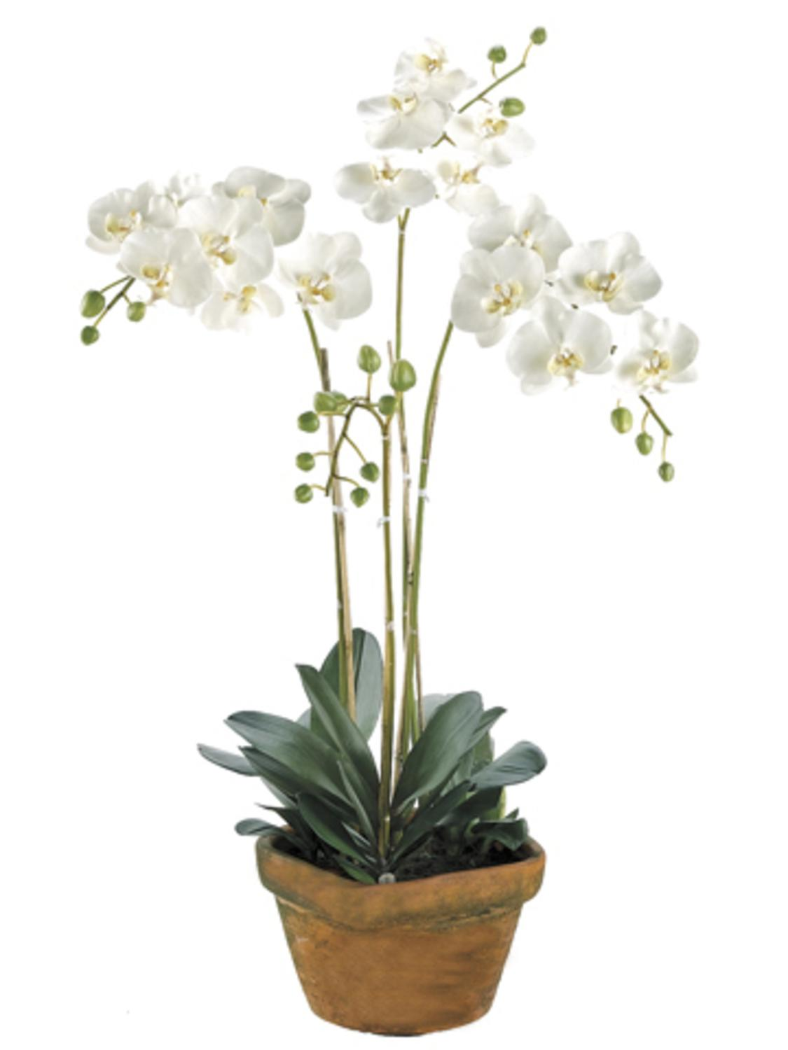 30 Potted Artificial White Phalaenopsis Orchid Plant Silk Flower