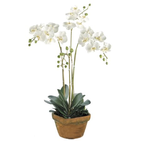 30 potted artificial white phalaenopsis orchid plant silk flower 30 potted artificial white phalaenopsis orchid plant silk flower arrangement mightylinksfo