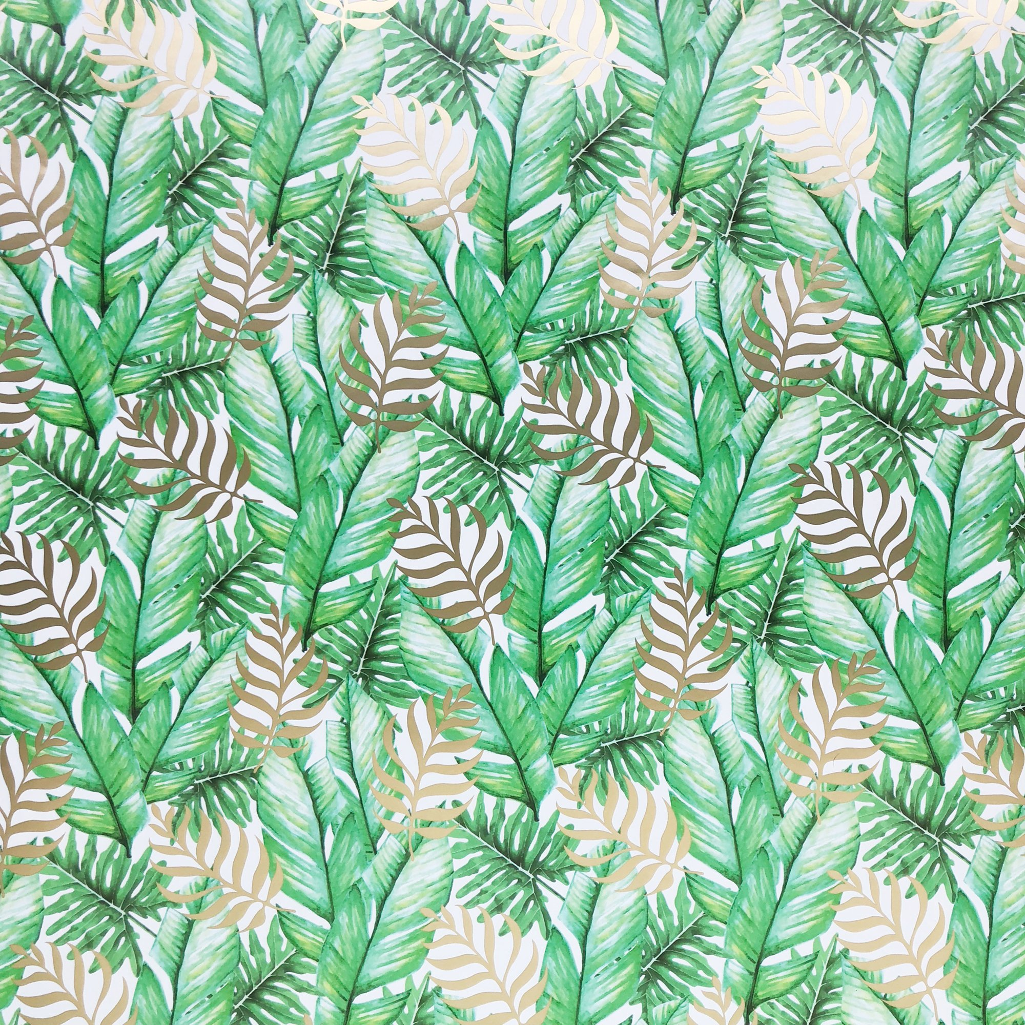 Jillson & Roberts Gift Wrap, Tropic Thunder (8 Rolls 5ft x 30in)