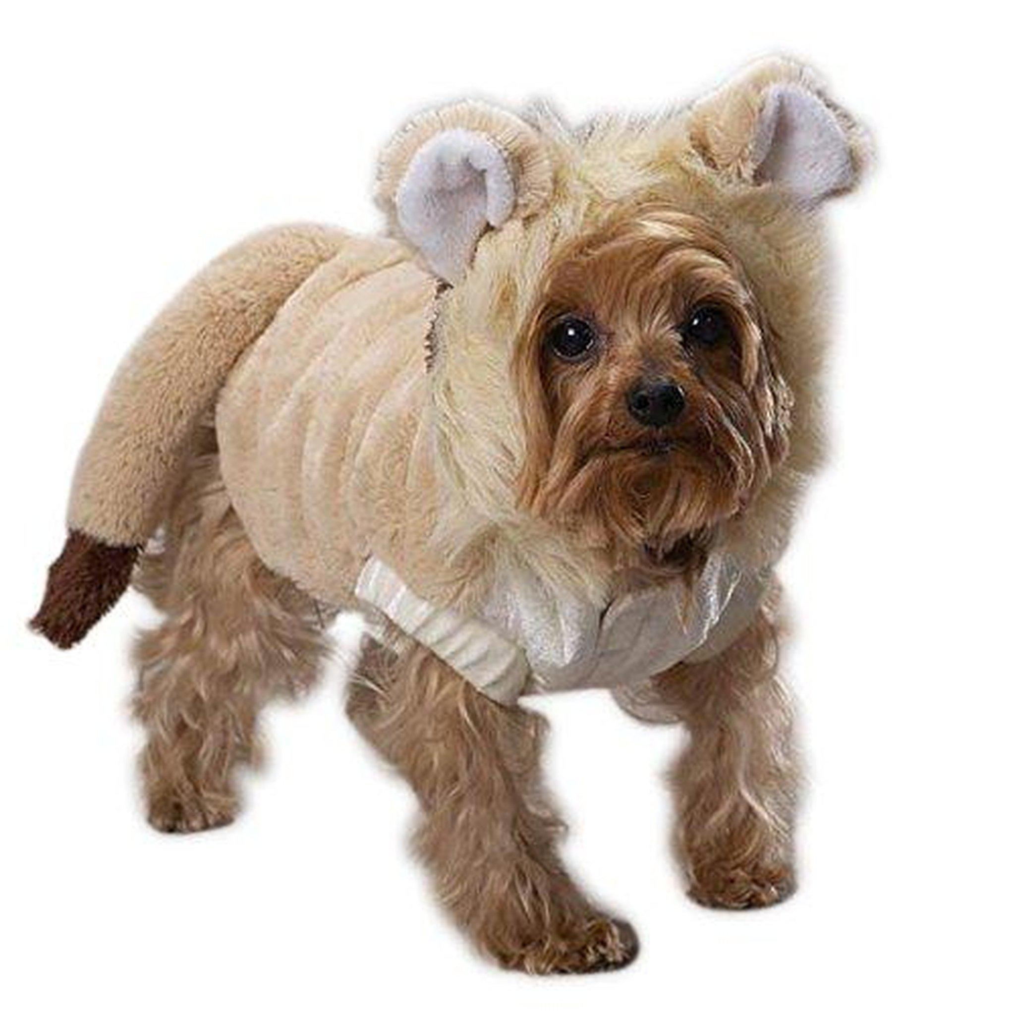 Casual Canine Lil Lion Dog Costume X-LARGE