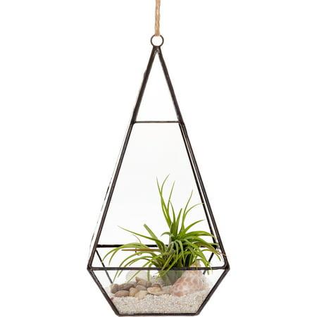 Mindful Design Geometric Large Diamond Desktop Garden Planter Glass Terrarium ()