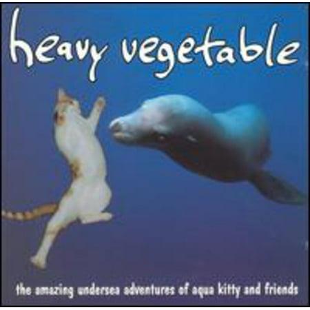 Amazing Undersea Adventures Of Aqua Kitty and Friends