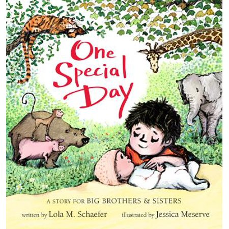 One Special Day: A Story for Big Brothers and Sisters (Board