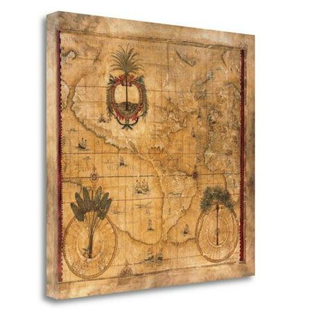 Tangletown Fine Art Nova Totius By Liz Jardine Graphic Art On Wrapped Canvas