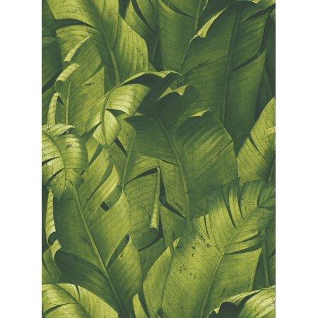 Nextwall Nw31000 Tropical Banana Leaves Peel Stick Wallpaper Green