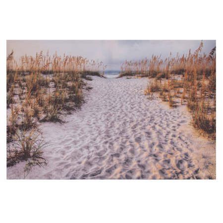 Photographic Canvas Art - Patton Wall Decor Path To The Beach Photography Canvas Art