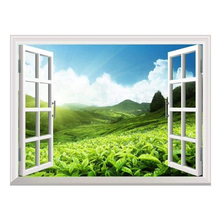 Plantation Small Wall (wall26 Removable Wall Sticker/Wall Mural - Tea Plantation in Mountain, Spring | Creative Window View Home Decor/Wall Decor -)