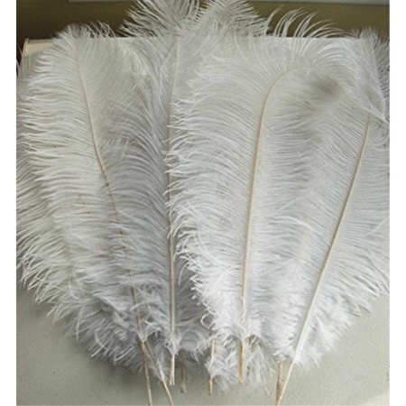 AWAYTR Natural 18-20 inch(45-50cm) Ostrich Feathers Plume for ...