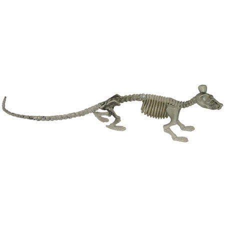 Forum Crawling Rat Skeleton Halloween Decor 14