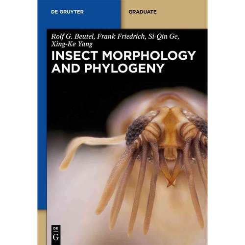 Insect Morphology and Phylogeny