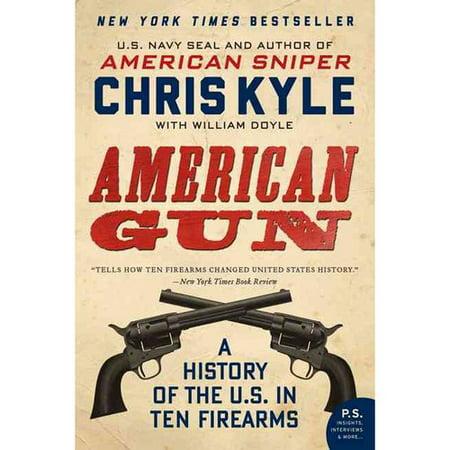 gun rights in america essay