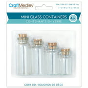 Mini Glass Containers with Cork Lid, 4pk