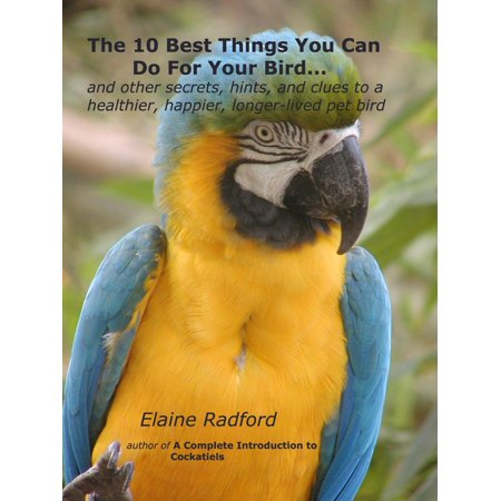 The 10 Best Things You Can Do For Your Bird -