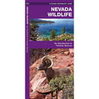 Nevada Wildlife: An Introduction to Familiar Species