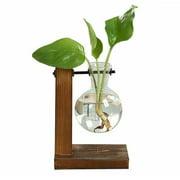 Willstar Desktop Glass Planter Bulb Vase Transparent Vase with Retro Solid Wooden Stand for Hydroponics Plants Home Garden Home Bonsai Decor