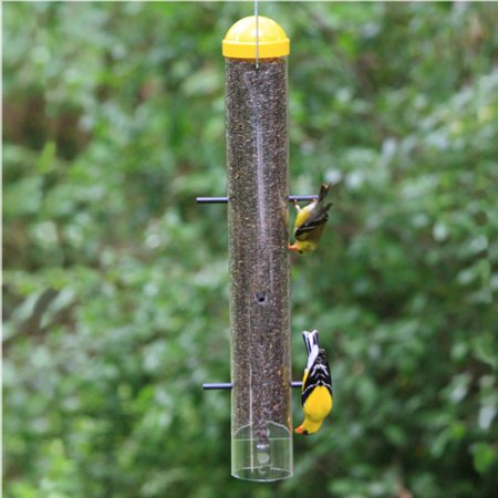com zoom duncraft bird finch feeders feeder little bit