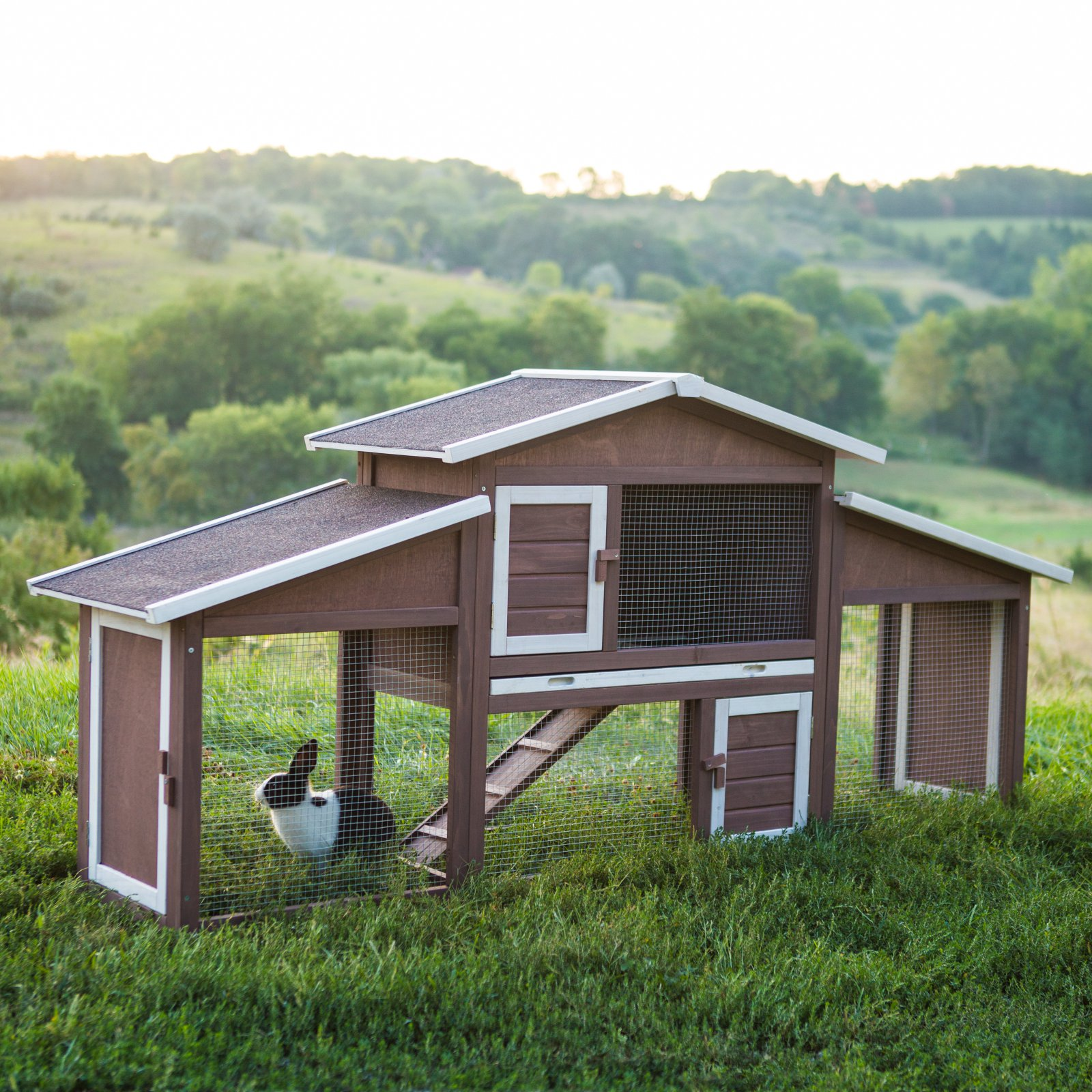 Boomer & George Dual-Use Rabbit Hutch Chicken Coop by