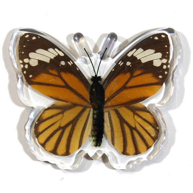 Ed Speldy East Company MT506 Real Bug Common Tiger Butterfly, Magnet