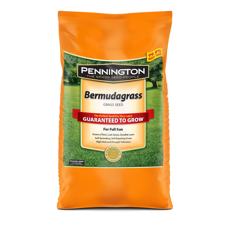 Pennington Sahara Bermudagrass Grass Seed, Drought Resistant Grass for Southern Lawns; 5 lb.