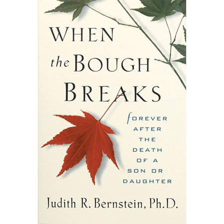 When the Bough Breaks : Forever After the Death of a Son or