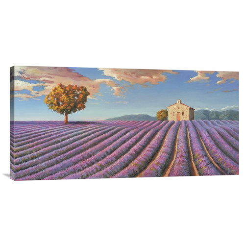 Global Gallery 'Campi di lavanda' by Adriano Galasso Painting Print on Wrapped Canvas