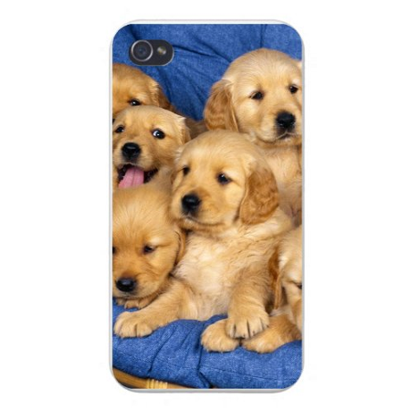 Apple Iphone Custom Case 4 4s Snap on - Cute Group of Golden Retriever Puppy Dogs (Groups Of Four)