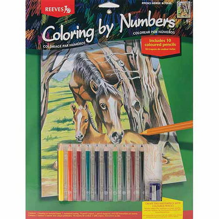 color by number kit 9x12 horse foal walmart com