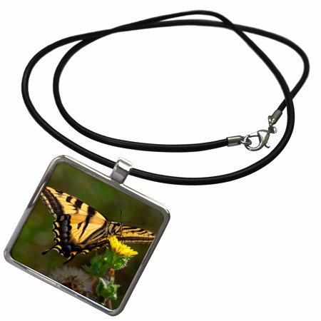 3dRose USA, California, San Diego, Mission Trails Park. An Anise Swallowtail. - Necklace with Pendant (ncl_205385_1) San Diego Padres Jewelry