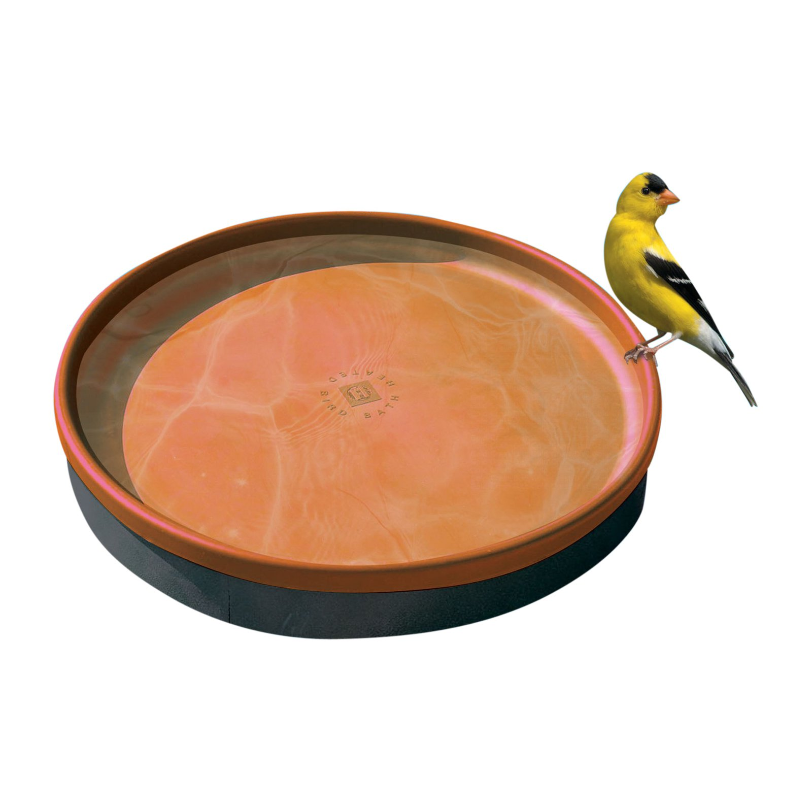 Farm Innovators 3 in 1 Heated Bird Bath