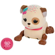 Little Live Pets Cutie Pup with Ball Accessory, Sprinky