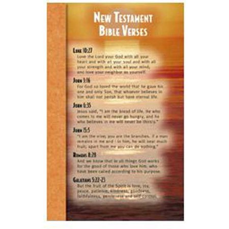 (North Star Teacher Resource NST2107 New Testament Bible Verses Memory Cards)