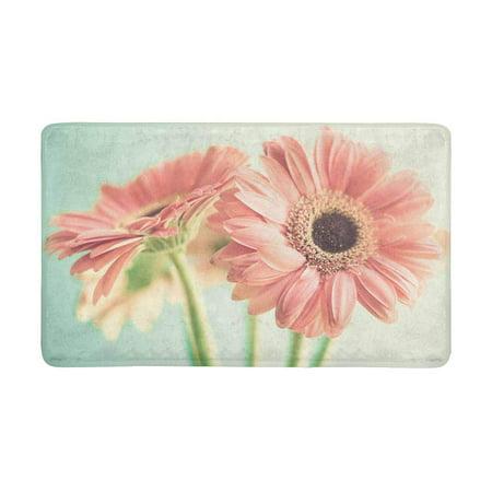 MKHERT Two Pale Pink Daisy Flowers Doormat Rug Home Decor Floor Mat Bath Mat 30x18 inch