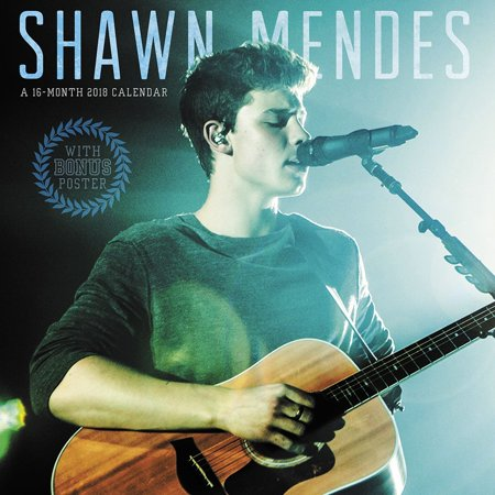 Shawn Mendes Wall Calendar  2018 Rap   Pop By Acco Brands