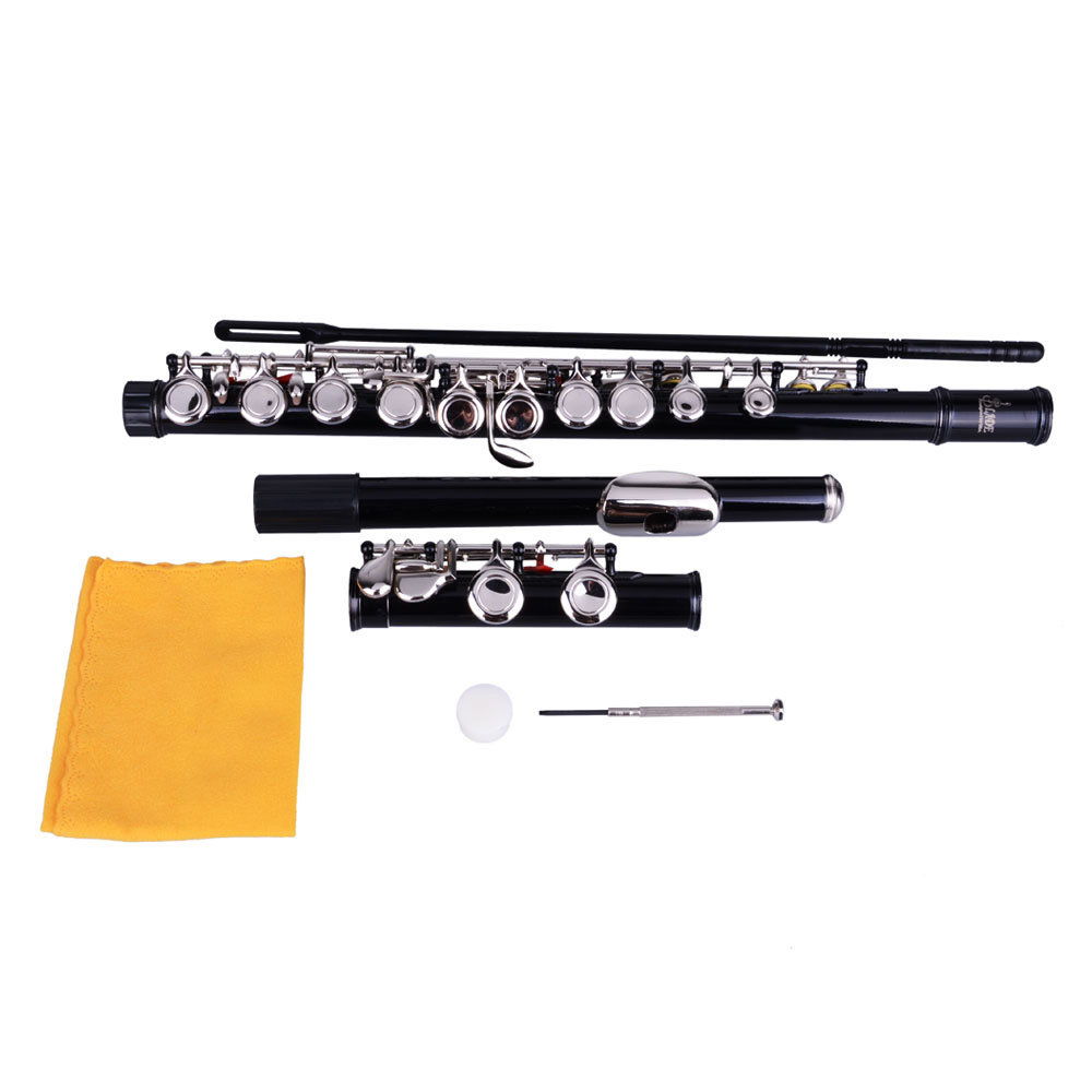 Zimtown 17 Hole C Flute for Student Beginner School Band with Case 6 Colors