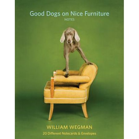 Good Dogs on Nice Furniture Notes : 20 Different Notecards & Envelopes ()