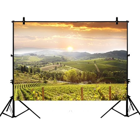 PHFZK 7x5ft Sunset View Backdrops, Chianti Vineyard Landscape in Tuscany, Italy Photography Backdrops Polyester Photo Background Studio Props ()