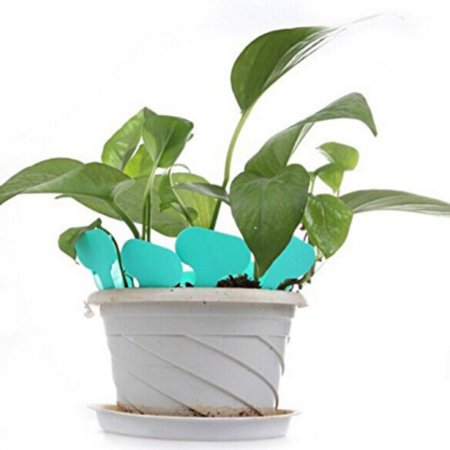 Waterproof Flower Pot - Supersellers 100pcs T-type Waterproof Plastic Tags for Gardening Plant Flower Vegetable Planting Label Garden Tools