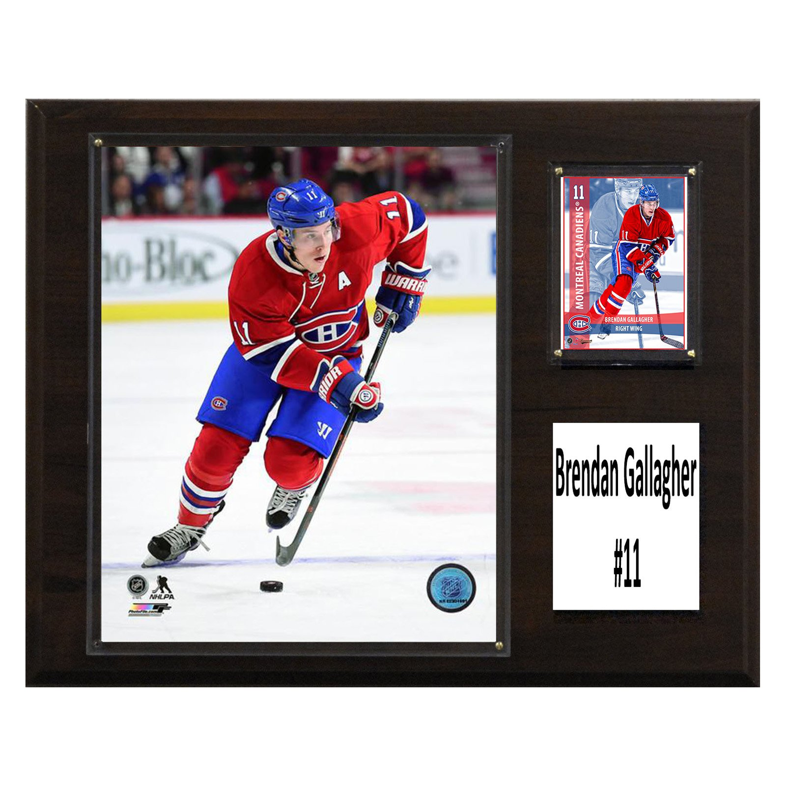 "C & I Collectables NHL 12"" x 15"" Brendan Gallagher Montreal Canadiens Player Plaque"