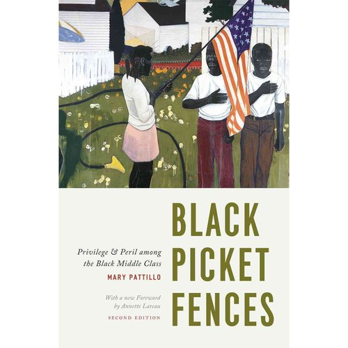 BLACK PICKET FENCES