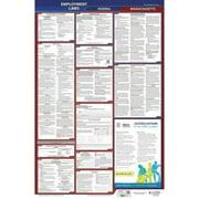 JJ KELLER 300-MA-5 LaborLaw Poster,Fed/STA,MA,ENG,26inH,5yr