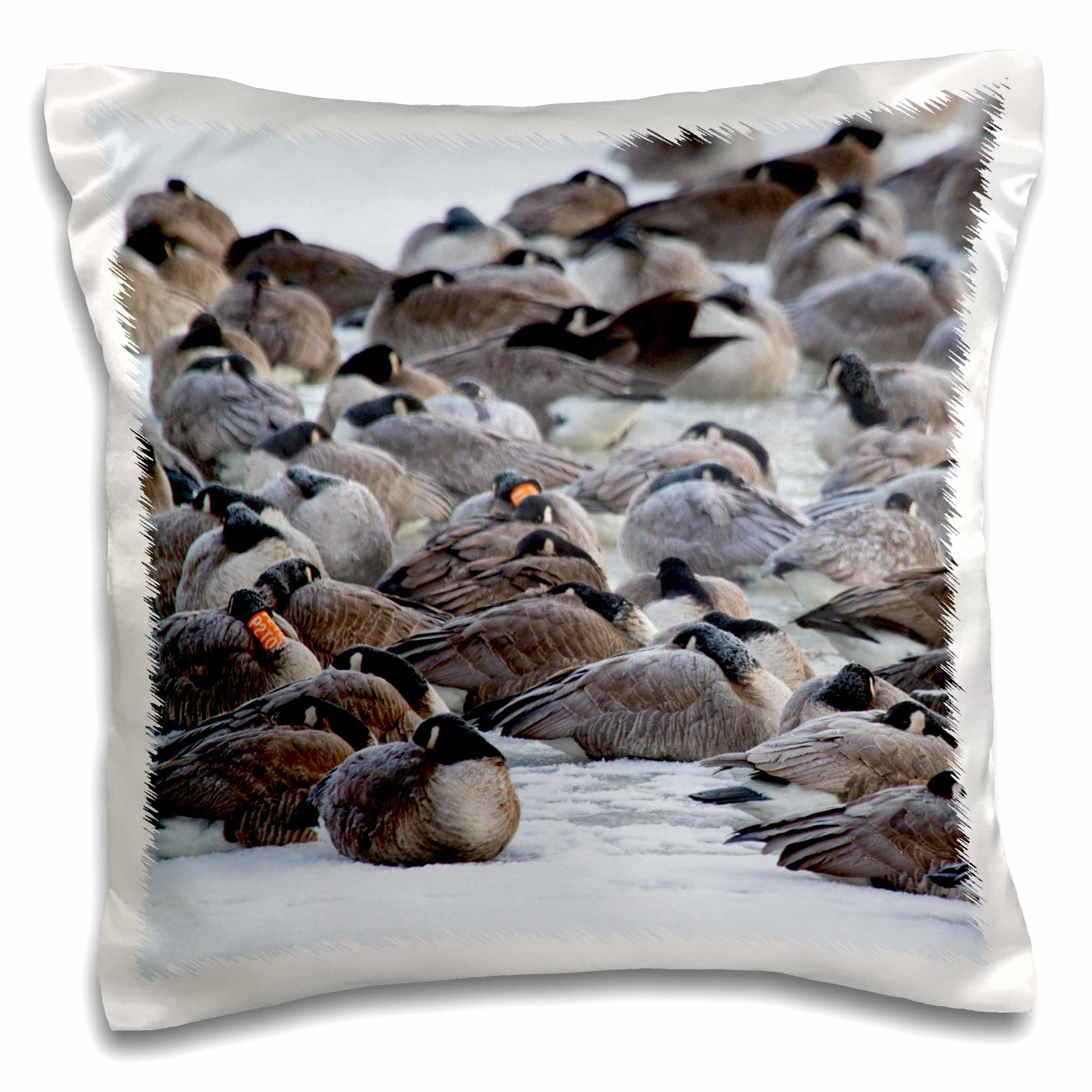 3drose Illinois Canada Geese Flock On Frozen Lake Pillow Case 16 By 16 Inch Walmart Com Walmart Com